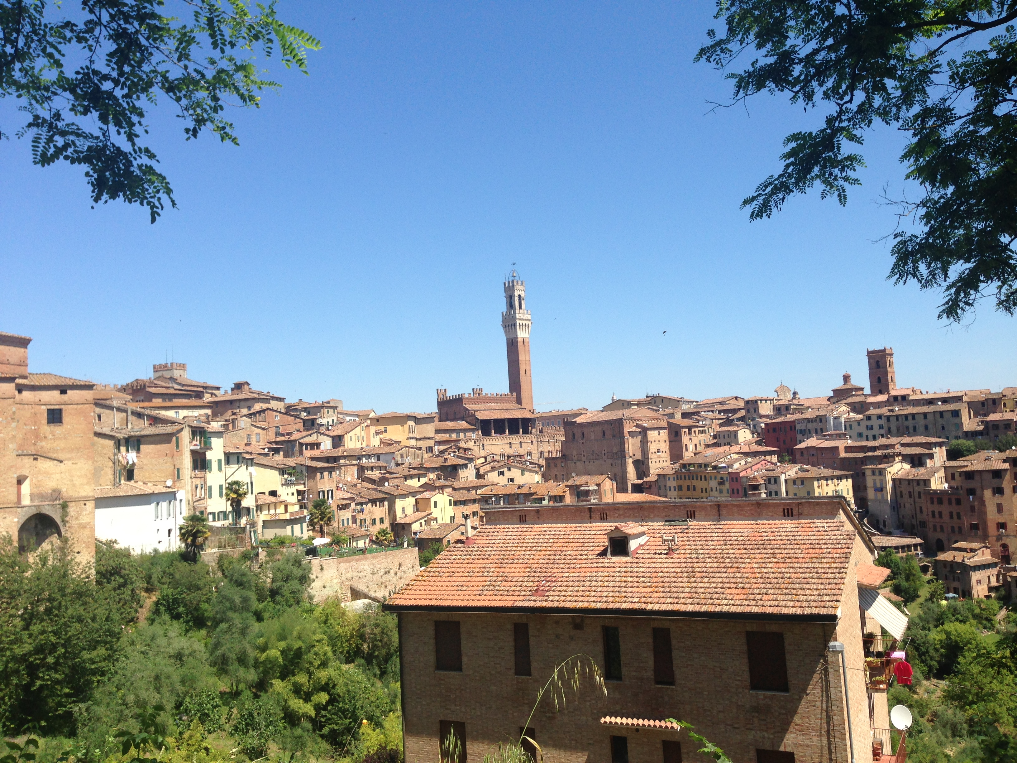 how to go from florence to siena