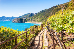 cinque terre hiking - Beautiful Vacation Spots