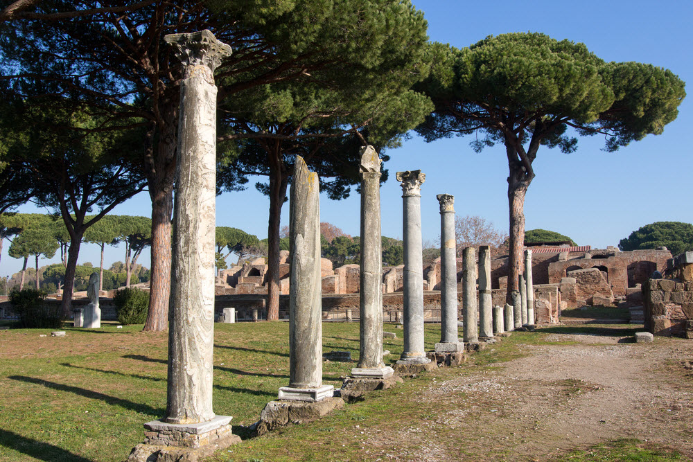 Full Day Wine Tours From Rome