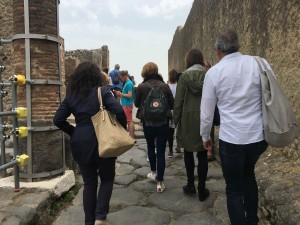 Pompeii and Mt. Vesuvius Private Day Tour from Rome