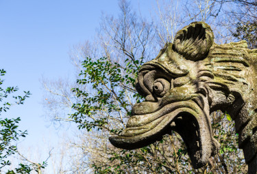 Bomarzo and Orvieto Day Trip from Rome